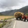 2010年川藏南线