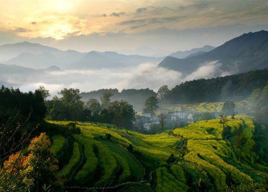 春游婺源:邂逅中国最美的乡村