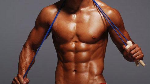 红肌肉和白肌肉以及齿轮比