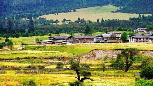 雪峰与红叶争辉 寻找西藏林芝最美的秋天