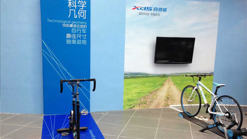 怎么买车?自行车最佳尺寸选购指南