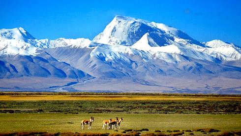 西藏不只有318 这才是西藏最值得去的20个地方