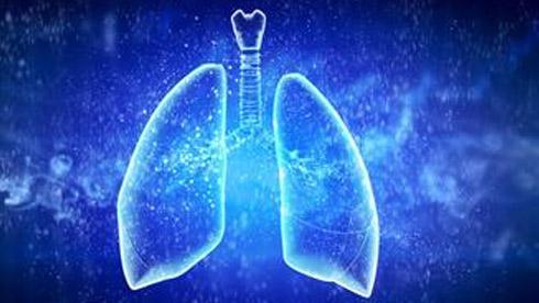 雾霾当道,七招教你如何养出干净的肺