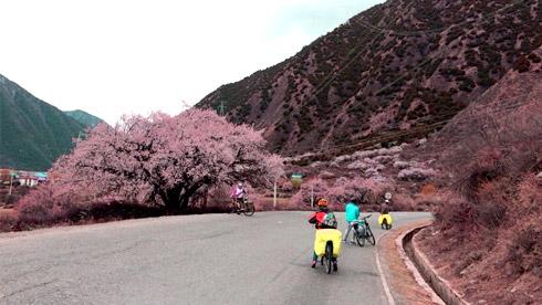 骑记之318景观大道(苏州-拉萨)【已到拉萨】
