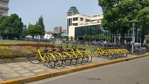 """共享""""小黄车""""会""""黄""""吗?上海有高校超半数损坏"""