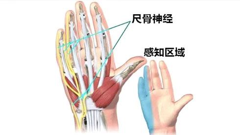 骑行中如何避免手握车把的麻痹疼痛