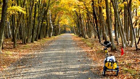 第四次骑行日本 ,带你看看京都的秋天