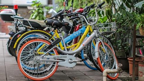 共享单车能否熬过下个冬天?