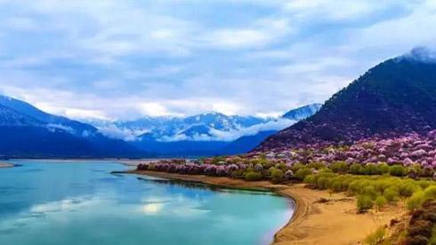 林芝:中国最美春天将花开成海,宛若仙境!