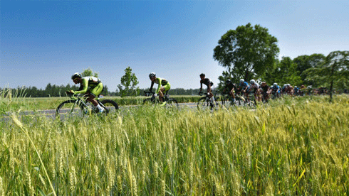 2018第八届中国·新沂环骆马湖自行车公路公开赛新闻发布会顺利召开