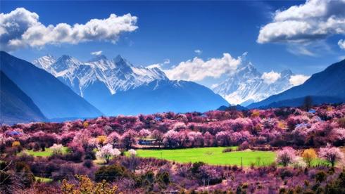 接下来一年西藏旅行时间表,此生必去一次。
